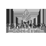 Teravista_logo